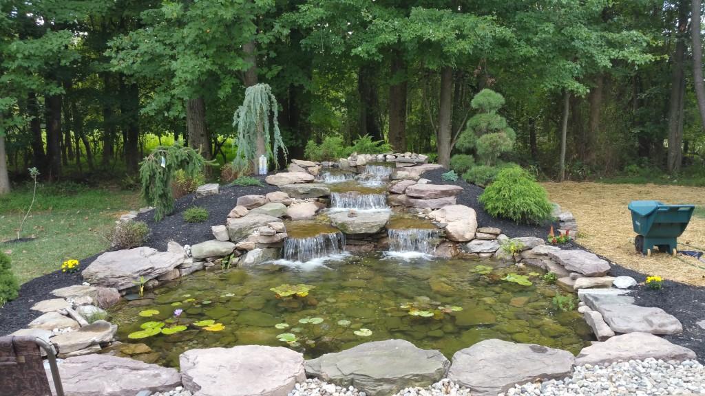 dixit-pond-installation-gaithersburg-md.jpg