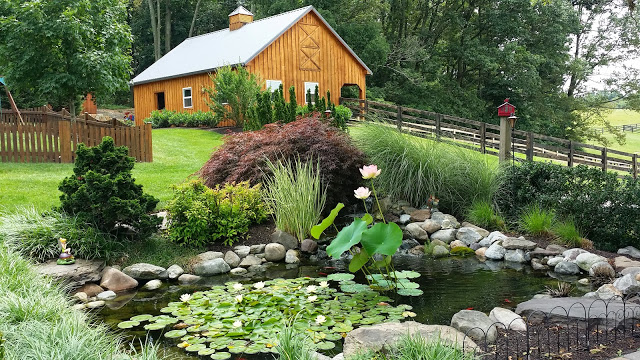 new-pond-build-Damascus-md-complete